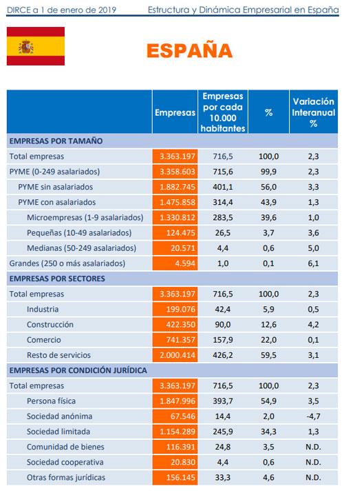 Estructura y dinámica empresarial en España