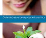 Guías dinámicas de ayudas e incentivos